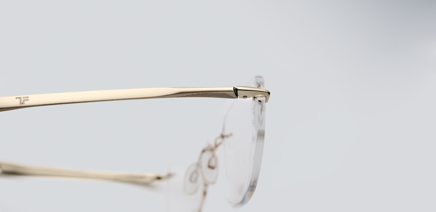 TITANflex spectacles with a sleek design
